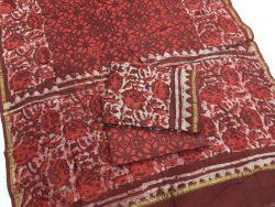 Dabu Batik Print Chanderi Suit (4)
