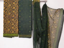 Kantha Work Cotton Suit With Pure Chiffon Dupatta (4)