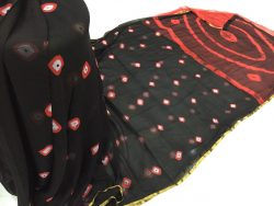 Pure Chiffon Saree With Blouse (9)