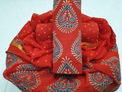 Zari Border Cotton Suit Set (10)